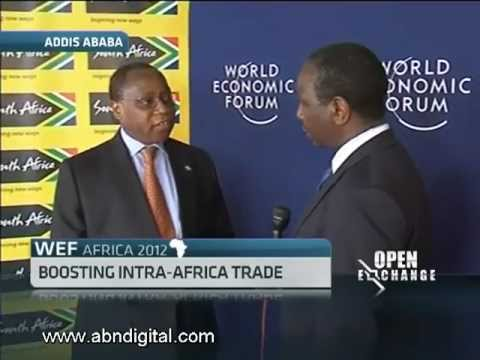 Developing a Pan African Free Trade Zone
