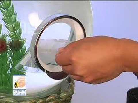 Aquatica Gallery Magic Globe Aquarium - English
