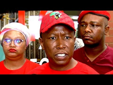 EFF leader Malema says Karima Brown is not a journalist