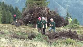 Volunteer abroad on mountain pastures in Tirol - Farming in the Alps