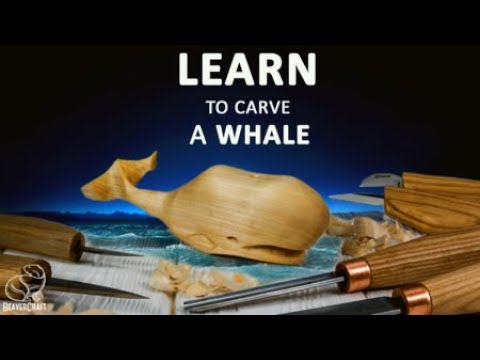 Wood carving for beginners ideas, courses. How whittling a whale or any fish self. Carving fish