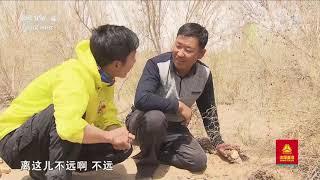 [远方的家]行走青山绿水间 梭梭种植:乌兰布和沙漠中的绿色| CCTV中文国际