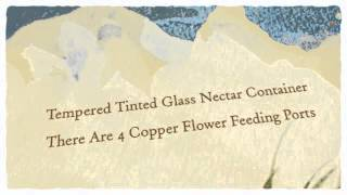 Avant Garden Looking Glass Hummingbird Feeder (8110-3) - Best Pet Supplies Review