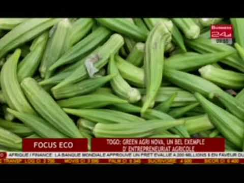 Business 24 / Focus Eco - Togo : Green Agri Nova, un bel exemple d'entrepreneuriat agricole