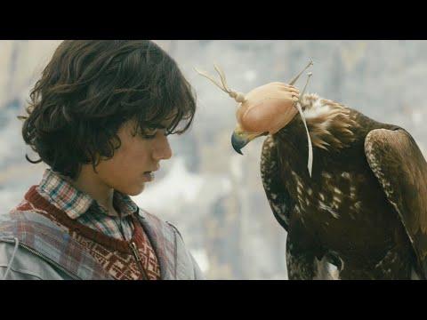 高分治愈电影,少年捡了只被鹰妈妈抛弃的小鹰,将它训练成山中之王