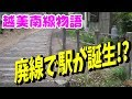 【迷列車】珍例!?廃線によって生まれた駅【長良川鉄道越美南線物語01】