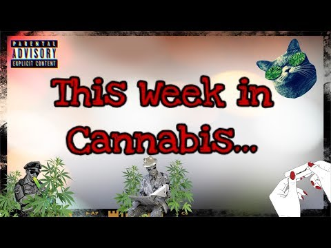 Cannabis News With Mr.SparkzAlot