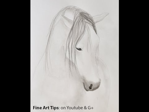 How To Paint A Horse With Chinese Ink - How To Draw A Horse