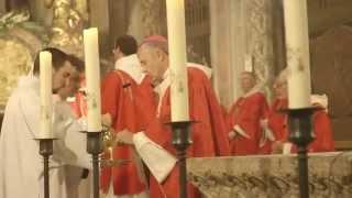 Basilique Saint-Sernin - Procession de la Saint Saturnin  SD