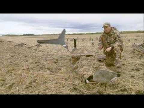 Canada Goose toronto sale price - Use Power Flags to Hunt Canada Geese - YouTube