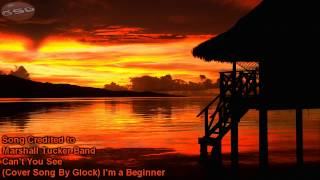 can t you see marshall tucker band acoustic guitar cover song from a beginner