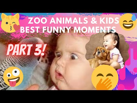FUNNIEST ZOO ANIMALS & BEST KIDS FUNNY MOMENTS TRY NOT TO LAUGH COMPILATION Part 3