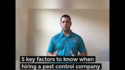 How to hire the right pest control company