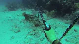 Spearfishing Puerto Rico 2013 (A way of life)