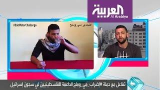 تفاعلكم : إضراب مي وملح لدعم أسرى فلسطين ومشاهير عرب يشاركون