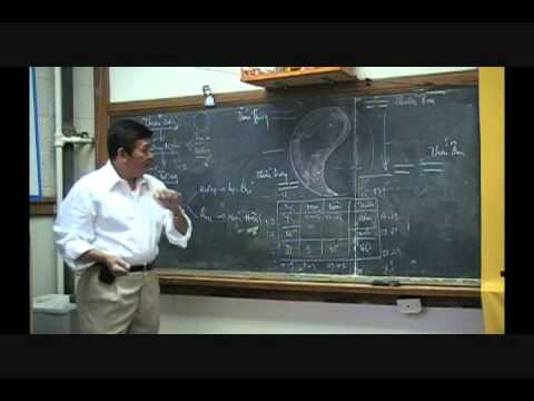 Bài Học Châm Cứu và Mạch Lý - Bài 2b.wmv
