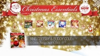Bing Crosby & Buddy Cole - Is Christmas Only a Tree // Christmas Essentials