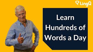Vocabulary - Learn Hundreds of Words a Day
