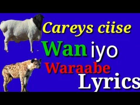 Download Carays ciise kaarshe Lyrics  | maanso | wan iyo waraabe