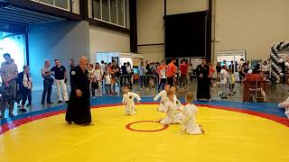 айкидо - открытый урок