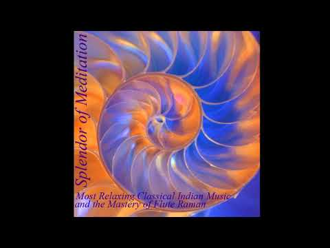Raman Kalyan - Shrotasvini [Relaxing Into The Music Of The Breath] (Track 08) Splendor Of Meditation