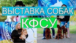 Выставка собак Кинолого-фелинологического союза Украины в Одессе