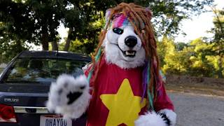 Furries Sell Used Cars