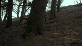 JACK PERRY SHREDS WELSH MTB TRAILS  Mondraker Foxy Carbon