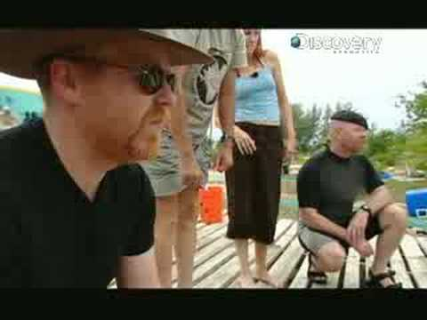 MythBusters - Drop of Blood