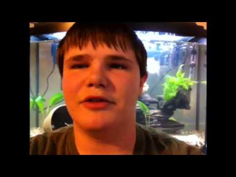 Sexing fish video #1: Oscar Travel Video