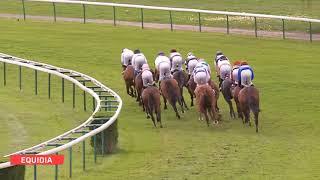 Vidéo de la course PMU PRIX DE MERCIERES