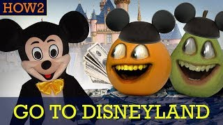HOW2: How to Go to Disneyland