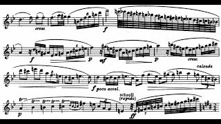 Richard Strauss - Oboe Concerto, TrV 292 (1945)