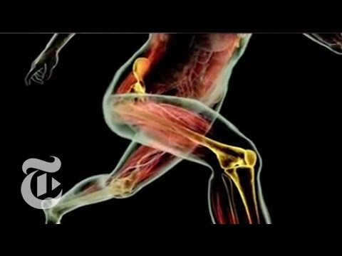 Magazine: Increasing Knee Stability | The New York Times