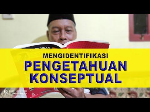 Pengetahuan Konseptual Pengertian dan Contoh