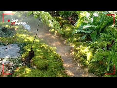 ลำธาร สวนมอส ป่าเฟริ์น หินสวยน้ำใส 1/5 สไตล์ Northwind landscape 095-6514408