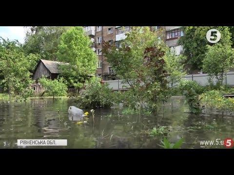 """""""Душа болить, що пропала городина"""": на Рівненщині затопило майже сотню садиб"""