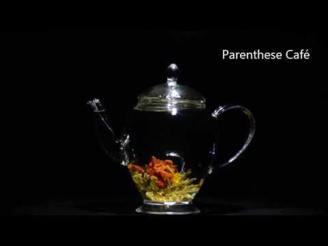 53adff8f4069e0 Eclosion d une fleur de thé Parenthese Café - YouTube