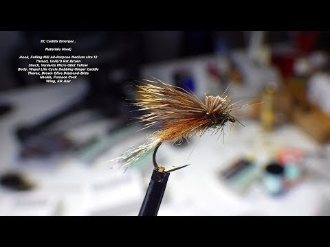 Download Youtube: Tying the EC Caddis (Emerger/Dry Fly) with Davie McPhail
