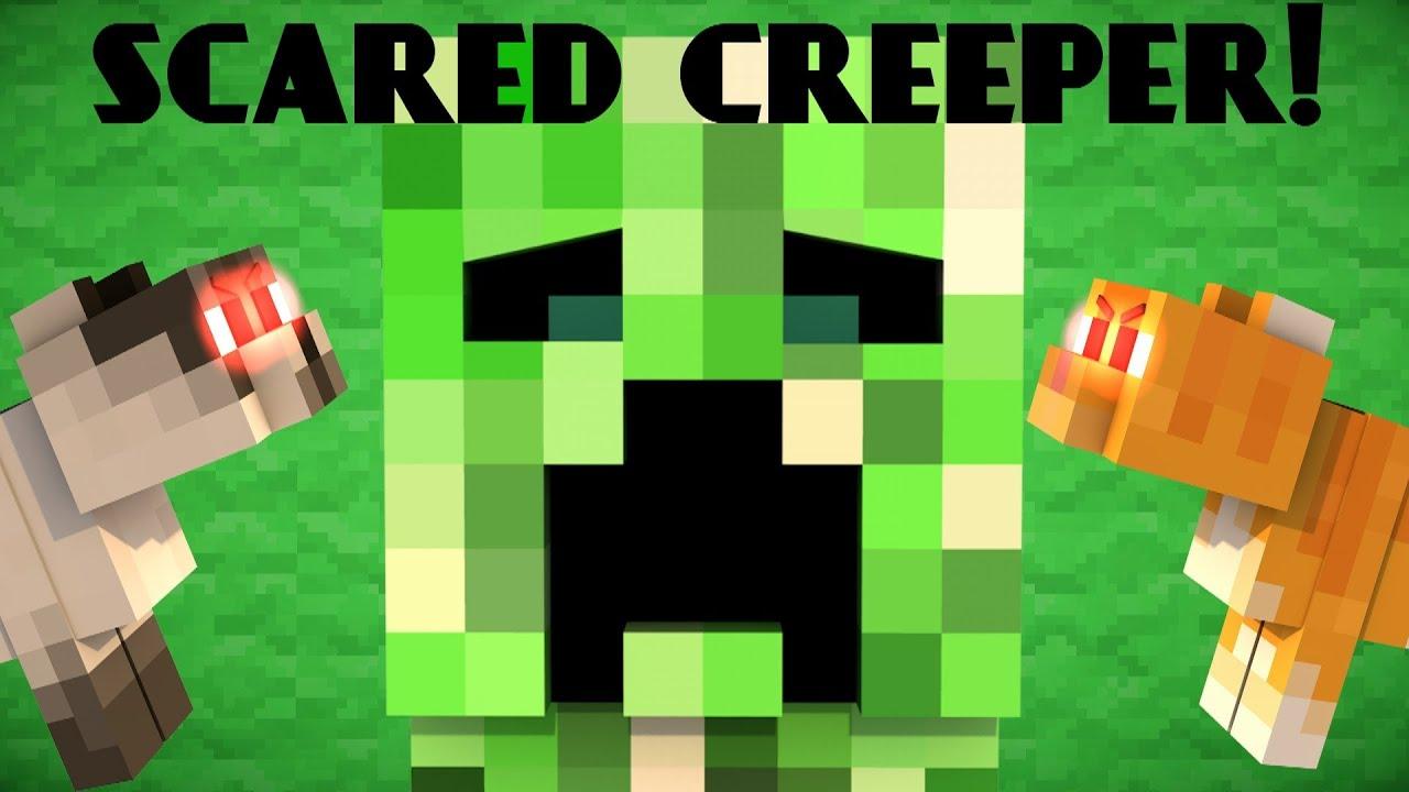 Creeper Cat Video