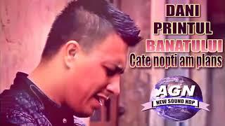 Dani Printul Banatului - Cate nopti am plans (Oficial Audio)
