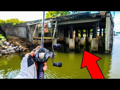 Fishing HUGE Structure for FAT Summer Bass (Game Warden!) from YouTube · Duration:  20 minutes 29 seconds