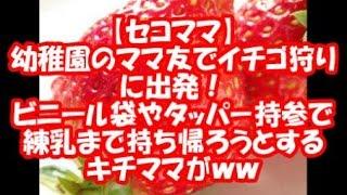 イチゴ狩りにて。農園 「小学生以上は1300円だけど、2人共(Dさんの子供...