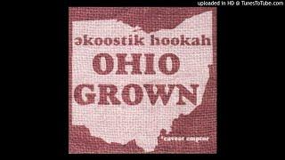 Ekoostik Hookah - Dragonfly (studio)