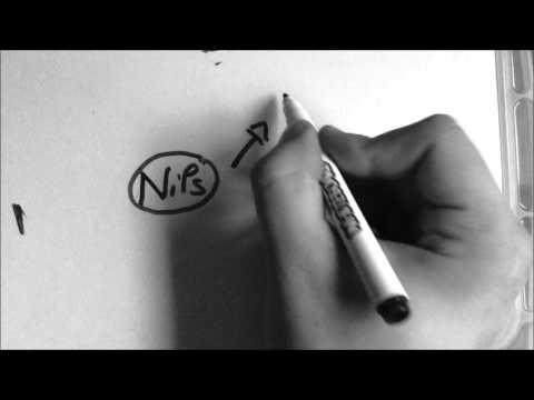 CV Vidéo AÏNAS Nils