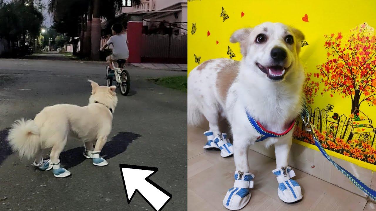 Riobaby and Lolo Pehli Baar shoes pahan ke Road Pe Walk Kiya -  Maza a Gaya 😂