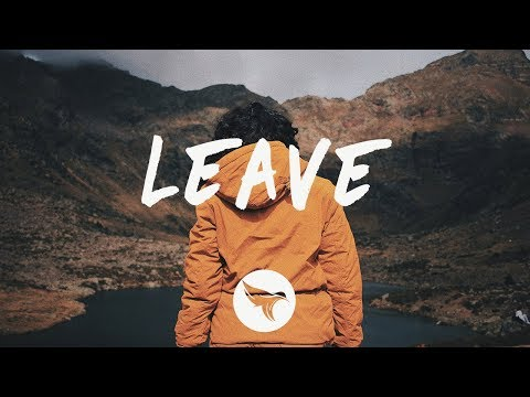 Dion Timmer - Leave (Lyrics) feat. Luma