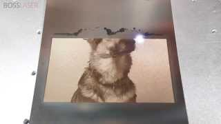 50 Watt Fiber Laser Engraving Picture Of German Shepherd On Stainless