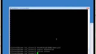 Webinar: Modernizing the Informix 4GL stores demo.