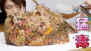 A fish that has 30 times more poison than habu. 『Reef Stonefish』the poison splashed out!